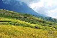HANOI – SAPA TREKKING – TA VAN HOMESTAY