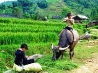 BAN HO VILLAGE & NAM TOONG VILLAGE FULL DAY