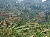 MUONG HOA VALLEY - TREKKING TOUR