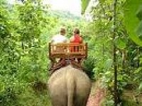 ELEPHANT RIDE IN YOK DON FULL DAY TRIP